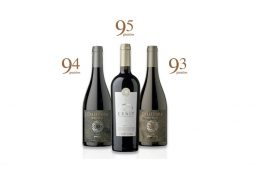Among the top wineries in Chile, according to the recently report by James Suckling